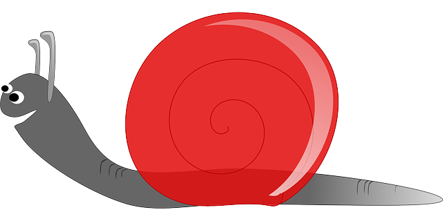 File:Snail-154986-640.png