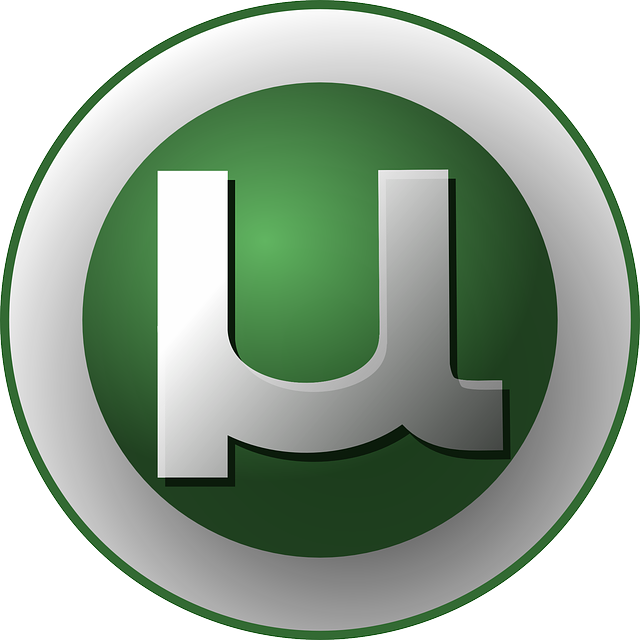 Torrent app I can use with Whonix like BitTorrent or